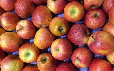 La fruta, pelada o sin pelar