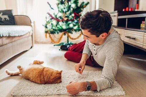 hombre jugando gato navidad